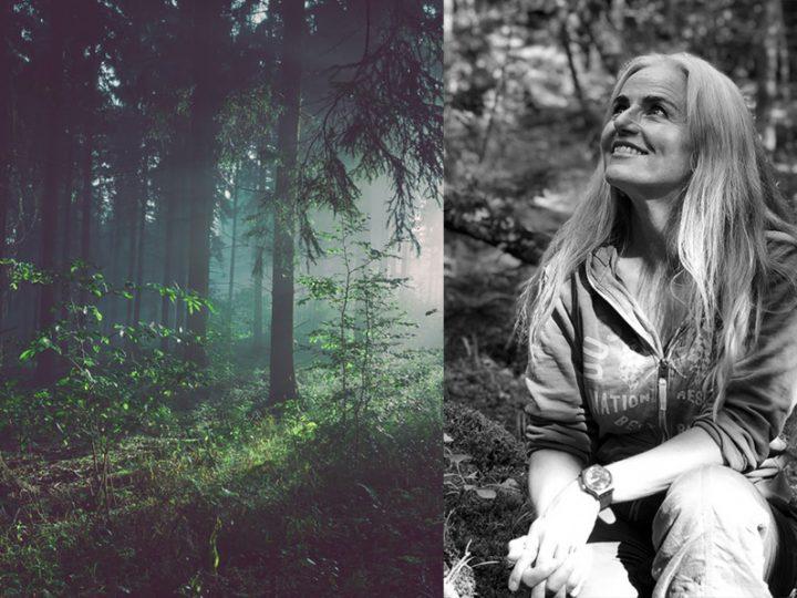 Naturvarande weekend med Skogsbad – Shinrin Yoku och mjukaste yoga